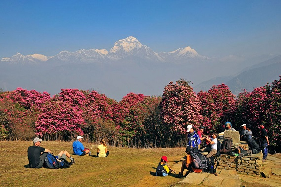 poon hill trekking is amazing site specially because of the magnificent view of the dawn.
